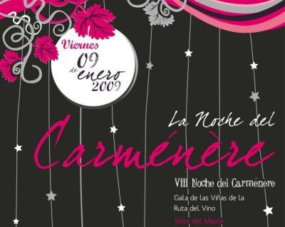 Fiesta del vino en Talca 1