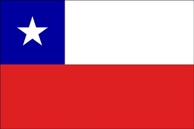 Bandera Chilena Big