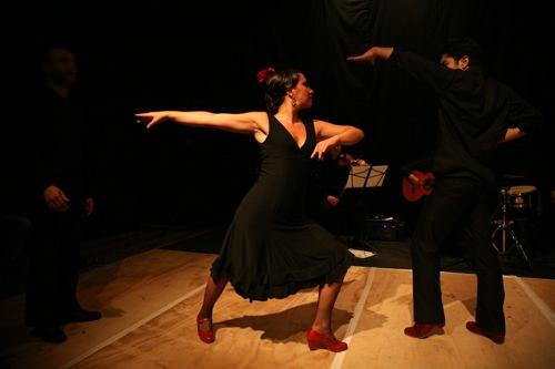 Flamenco1-1