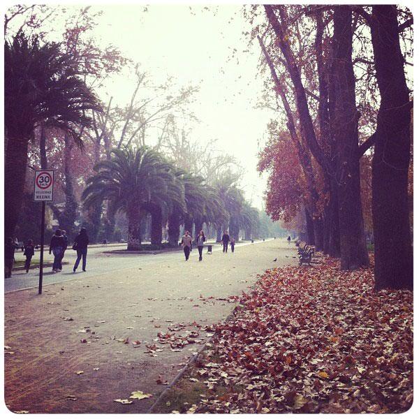 Un paseo por la Quinta Normal 9