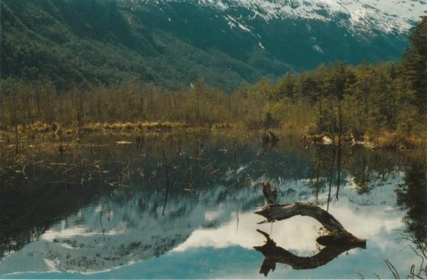 Álbum Zancada: Patagonia tras mis ojos 1