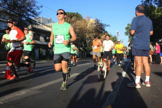 Fotos del Maratón de Santiago 2015 165