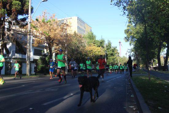 Fotos del Maratón de Santiago 2015 154