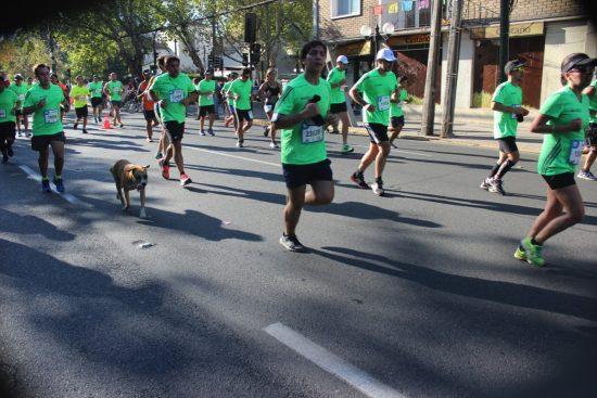 Fotos del Maratón de Santiago 2015 107