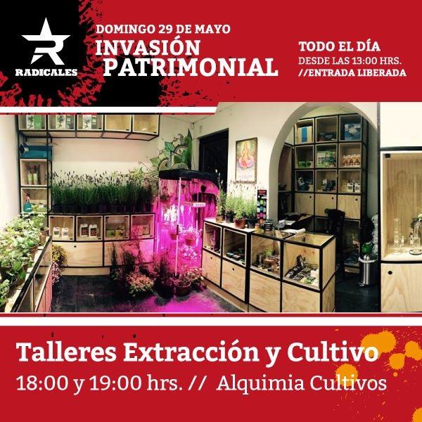 Invasión patrimonial en Radicales 19