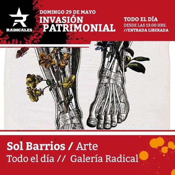 Invasión patrimonial en Radicales 5