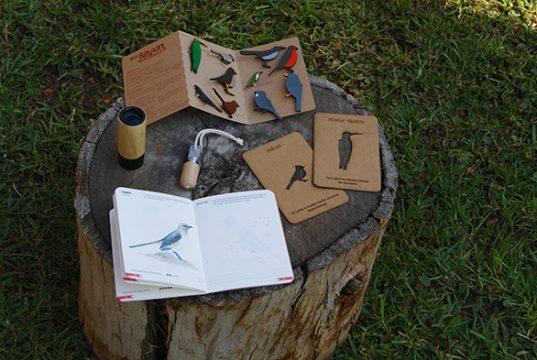 aves chilenas