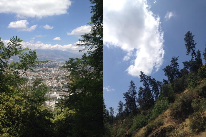 El sendero Zorro Vidal: mini trekking en el Cerro San Cristóbal 1