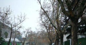 ser feliz en invierno