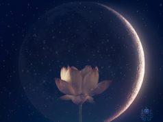 recibir la luna nueva