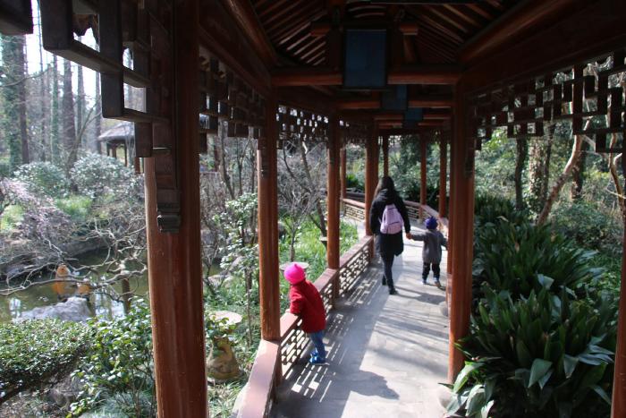 Vivir en: Shanghai 1