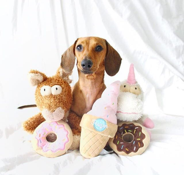 Ideas de regalos: Fuzzyard, accesorios para tus perritos 5