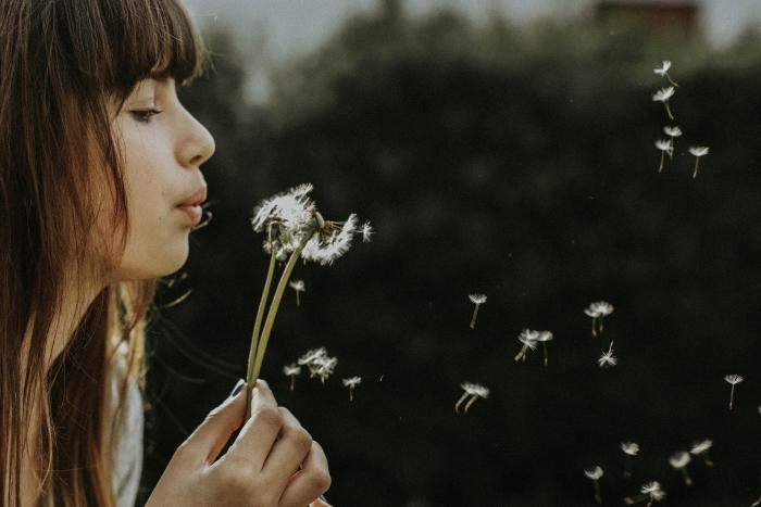 Las razones holísticas de las alergias 1