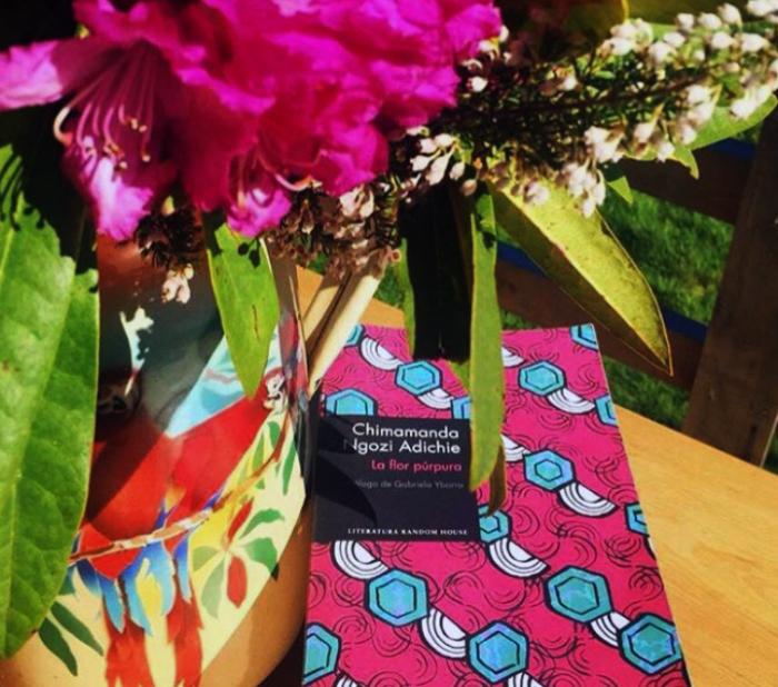 La flor púrpura de Chimamanda Ngozi Adichie 1