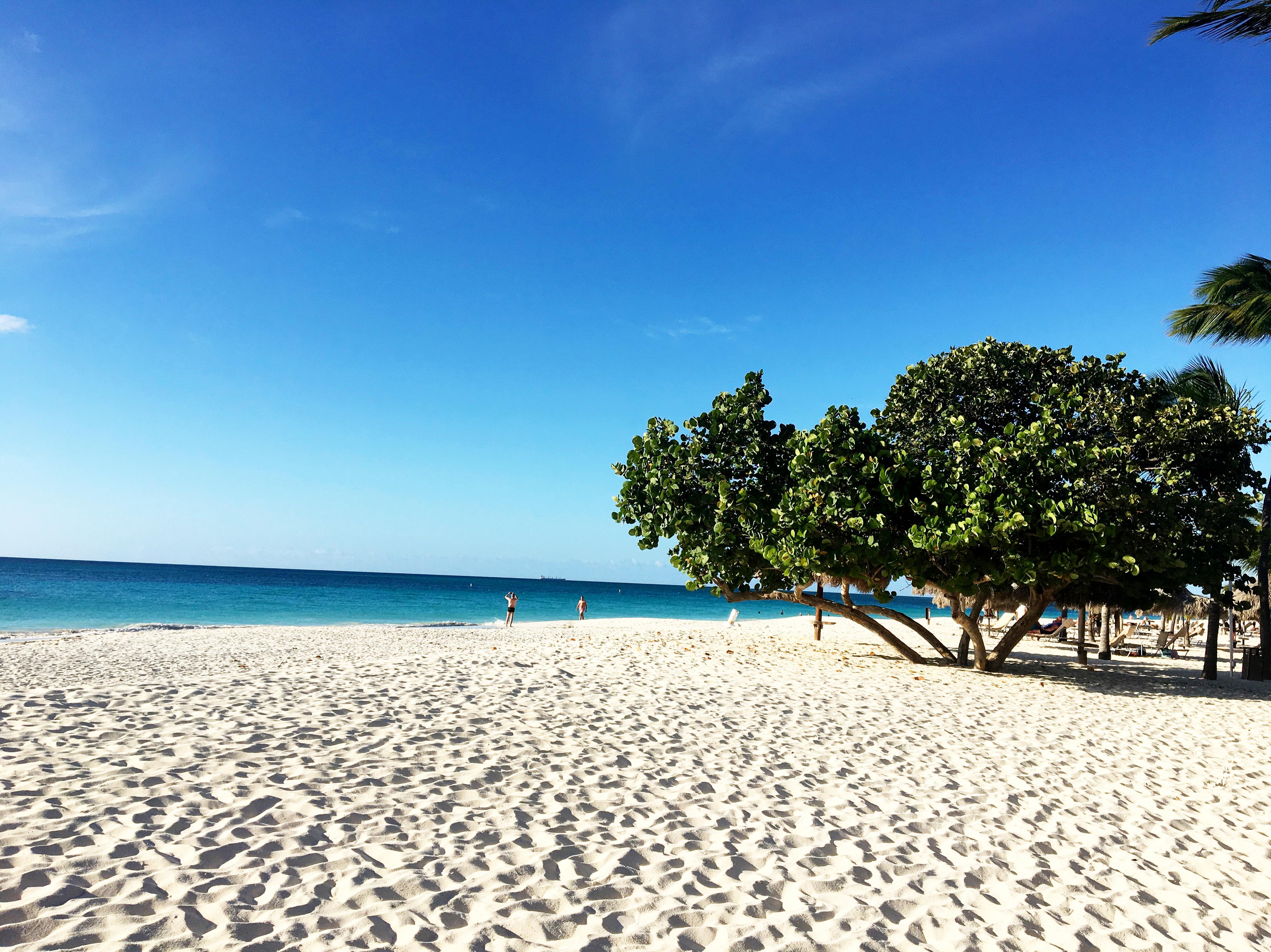 Aruba: Una isla feliz los 365 días del año 1