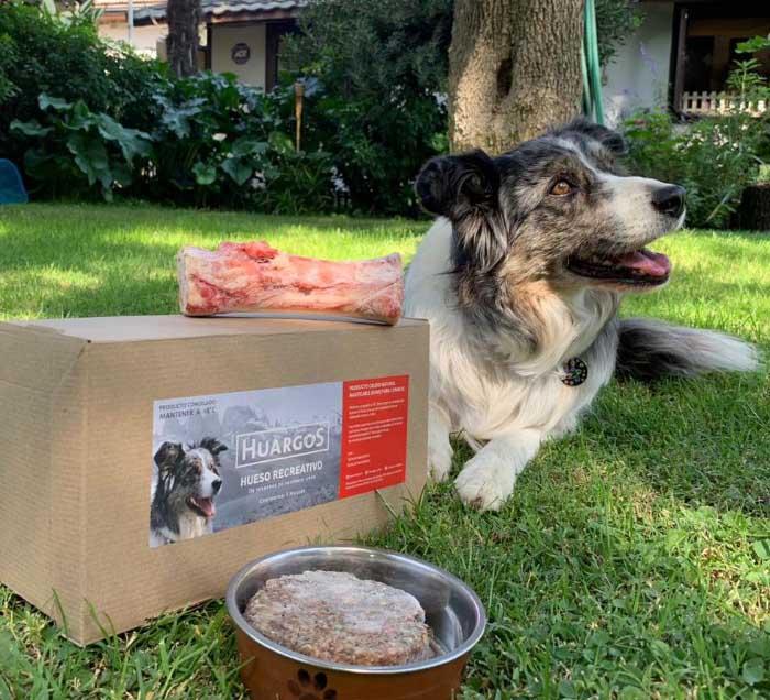 Huargos, comida cruda para perros 1