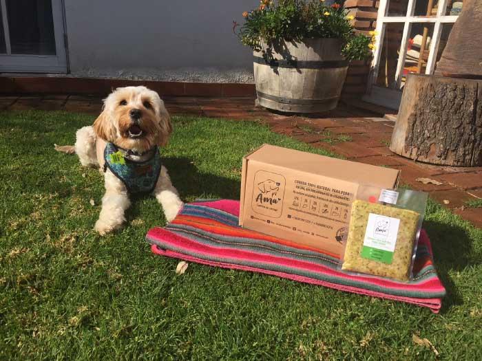 alimentación natural para perros
