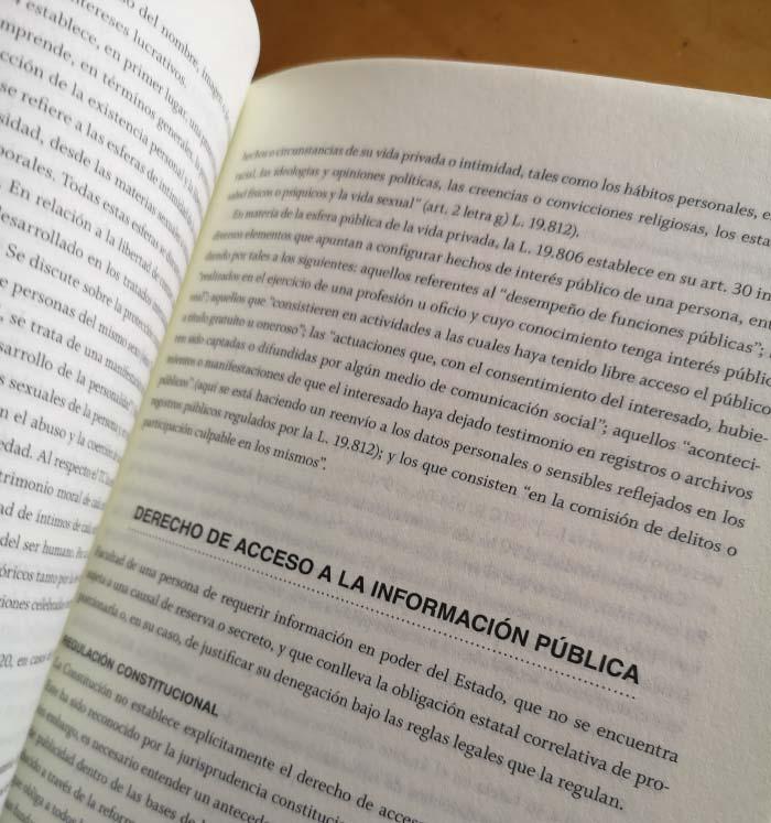 Diccionario Constitucional Chileno editado por Hueders 2