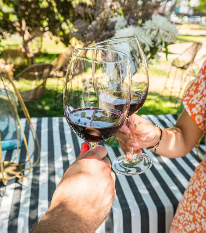 Panorama del amor en Viña Terramater: Tour Love & Wine el 15 de febrero 2