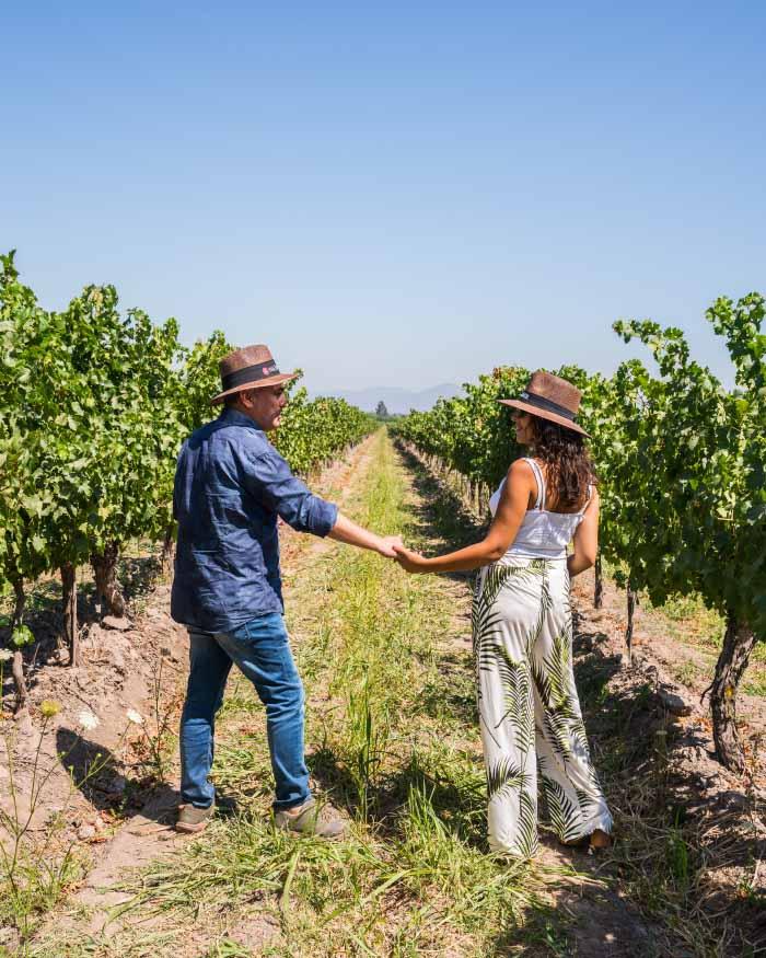 Panorama del amor en Viña Terramater: Tour Love & Wine el 15 de febrero 1