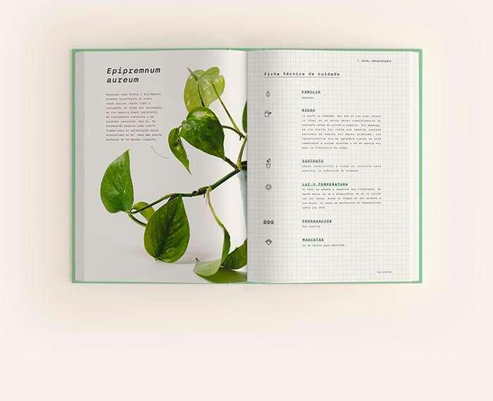 Laboratorio Botánico: un bello libro para amar las plantas de interior 1