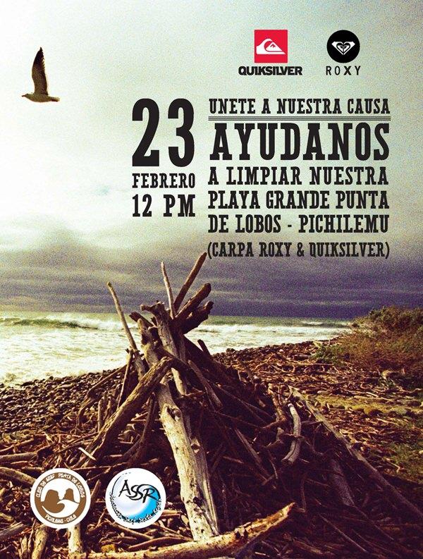 Limpieza playa Punta Lobos 1