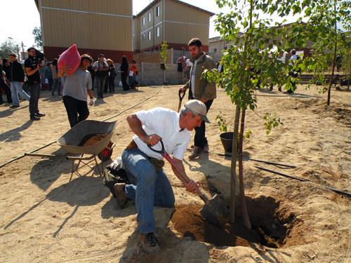 Jornada de Plantación de Arboles LG & Un techo para Chile 16