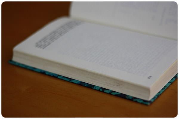 Terminar un libro 1