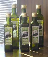 Aceite de Oliva con especias 3