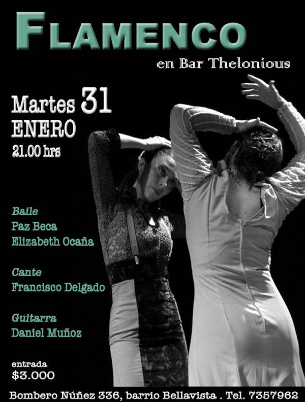 Noche de flamenco 3