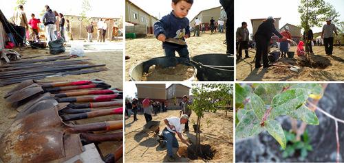 Jornada de Plantación de Arboles LG & Un techo para Chile 1