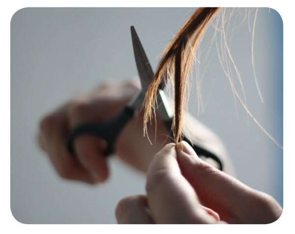 Los días de adaptación a un corte de pelo 1