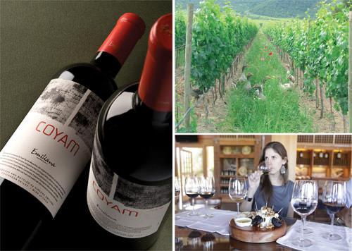 Concurso: Aprendiendo sobre el vino 1