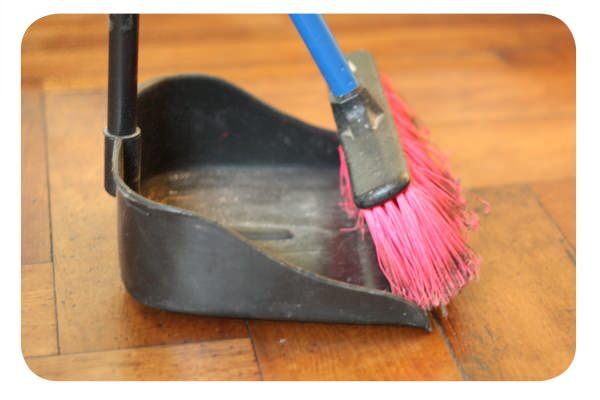 Maniática de la limpieza o floja rematada 3
