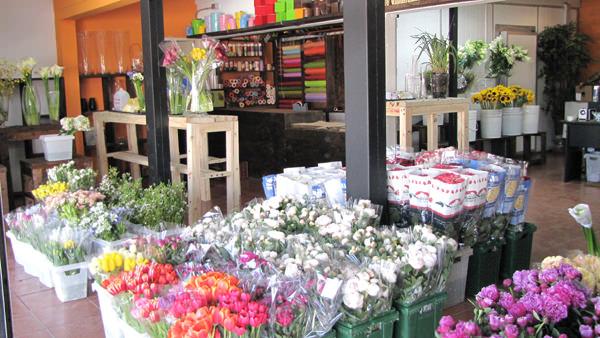Nuevo Mercado de Flores y Plantas en Santiago 3