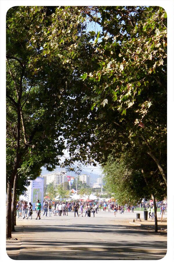 Apuntes día sábado 31 de marzo, Lollapalooza 2012 42