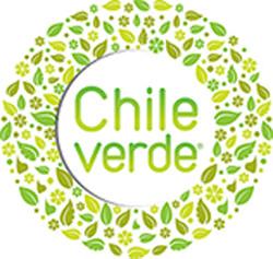 """Abiertas las postulaciones para """"Chile Verde: Energía y Medio Ambiente"""" 1"""