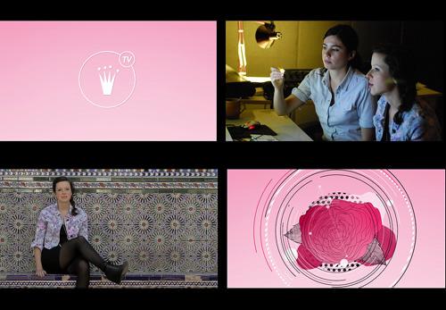 Nuevo capítulo Miss Triumph TV 1