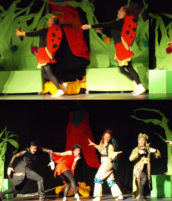 Teatro: Par par del bosque 1