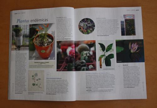 Revista Paula, edición Bicentenario 14