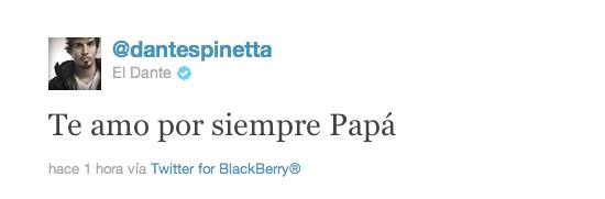 Murió Luis Alberto Spinetta 3