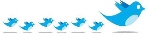 Cómo usar Twitter 1