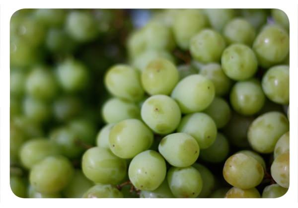 Aquel caso de las uvas con cianuro 1